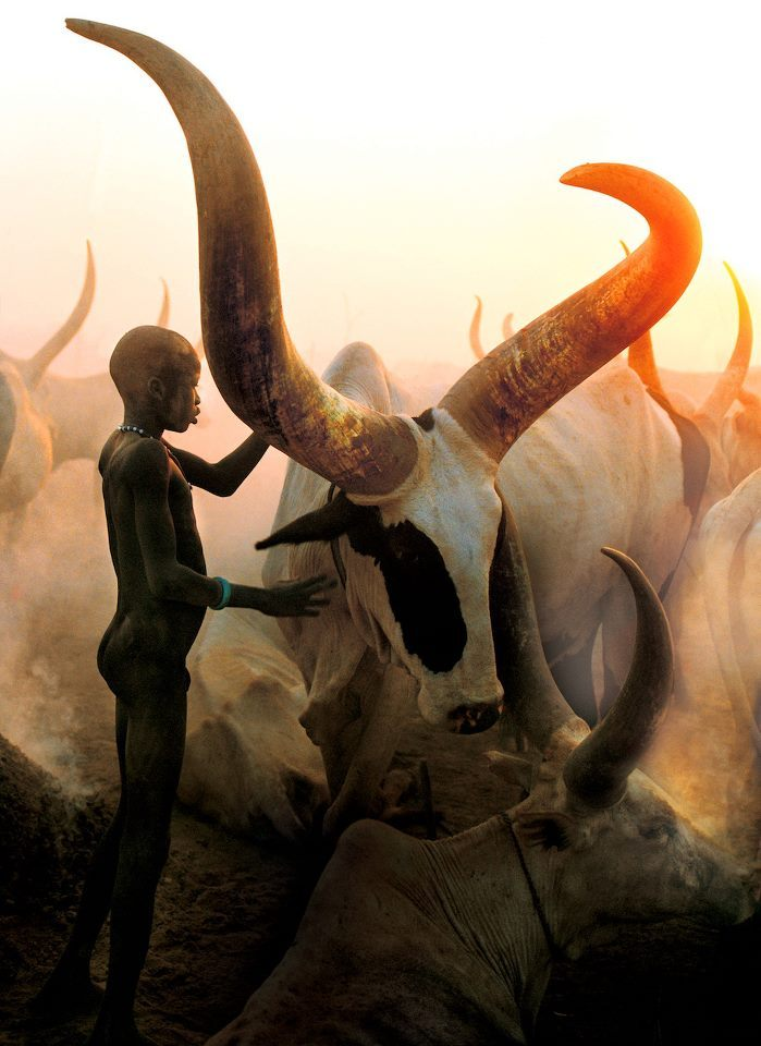 meduuusa:  bitchimfromlansing:  Dinka Boy by Carol Beckwith and Angela Fisher