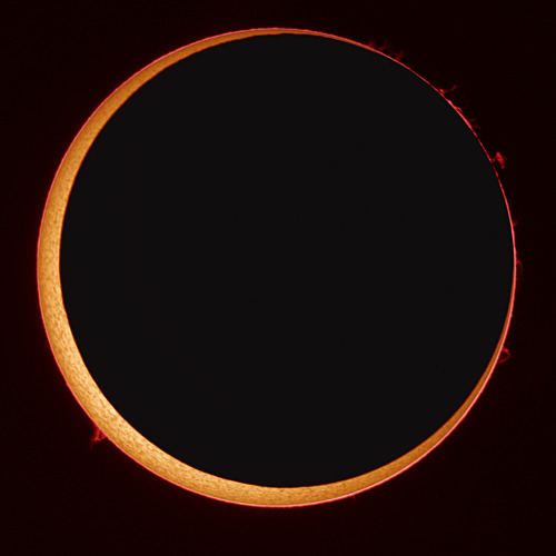 sklogw:  Annular Solar Eclipse at High Resolution Credit & Copyright: Stefan Seip