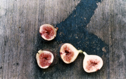 whiskeyandoak:  i don't actually like figs, but i like the pictures of them so i shall reblog 'em anyway