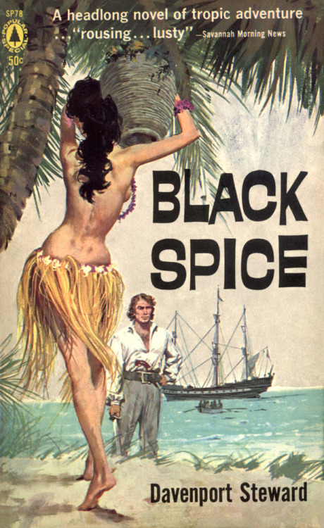 hoodoothatvoodoo:   Black Spice by Davenport Steward, Art by Robert McGinnis