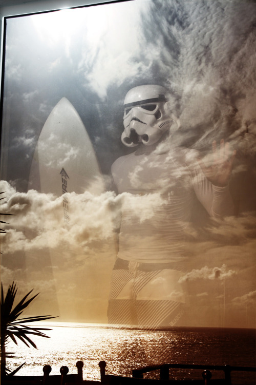 "surfingtrooper:  ""And he's still frozen in carbonite."" (arrifana, portugal)"