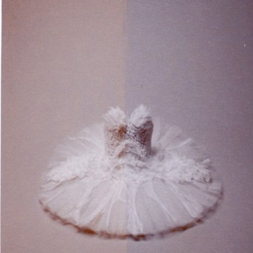 officialrodarte:  Sepia polaroid, the white swan by Autumn de Wilde (@officialautumndewilde) (Taken with Instagram)