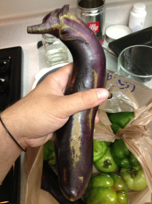 Seahorse Eggplant. RARE.  Watch it become something else later. Lol.