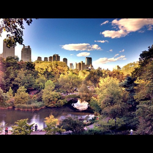 Central Park view from atop Big Rock… #nofilter #hdr (Taken with Instagram at The Big Rock)