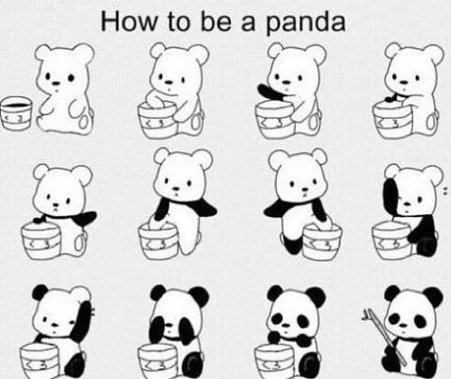 everyone wants to be a panda SO ASIAN