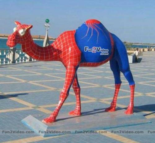 Spiderman Camel