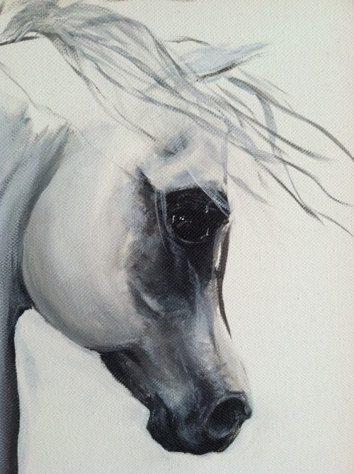 Here's my horse painting a bit closer to your eyes…