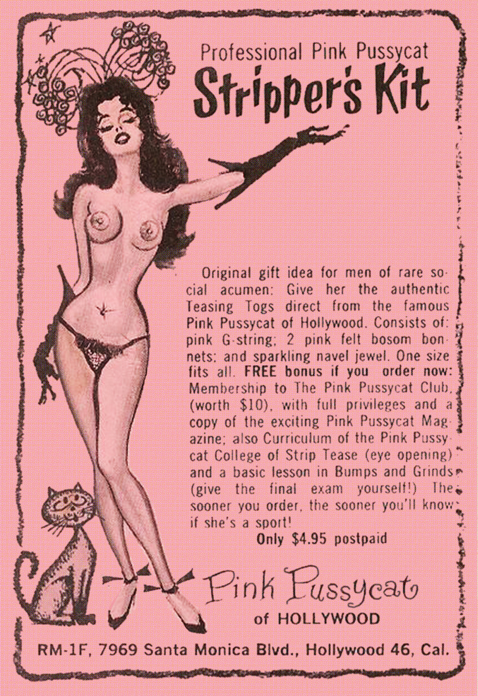 Pink Pussycat Stripper's Kit Available as a T-Shirt Design from $11.45 US http://vulturegraffix.onlineshirtstores.com