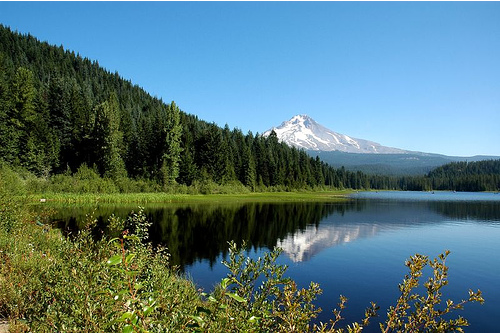 Mt Hood, Oregon August 2006 (by Madison76)