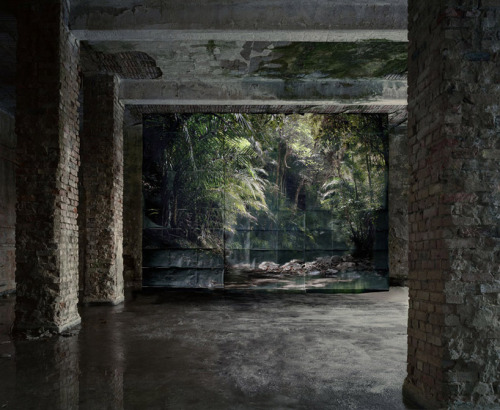 cjwho:  images of nature suspended within abandoned sites by noemie goudal