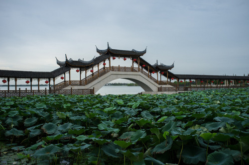Jinxi water town on Flickr.