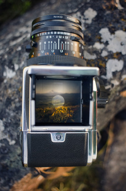 pastelpegs:  gstephen137: definitelydope: through a hasselblad's eyes (by manyfires) I want to see one of these someday.