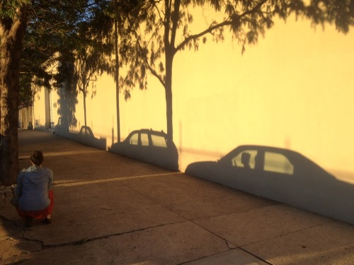 We walked around Greenpoint's waterside at sunset yesterday.   My shadow stole a car.