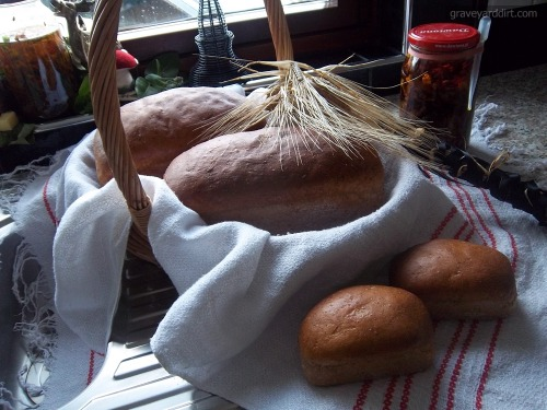 graveyarddirt:  Harvest Home Bread Sale, by Ms. Graveyard Dirt If you have the misfortune of following my mouthy ass you already know that I spent a significant portion of Saturday's equinox elbow-deep in flour'n'yeast observing Harvest Home the best way I can: by baking some magic mothereffin' bread. After taking a share for my own personal practices - which I'll be boring you with at a later date! - I have a few loaves of the Ceres-blessed honey and whole wheat bread to spare for your personal practices! I strive to use local, organic and Fairtrade ingredients that are both friendly to animals and environment in all of my cooking, this bread being no exception. This particular batch'o'bread uses: Scottish tap water, yeast, local honey, organic bread flour, goat butter and sea salt. The bread's suitable for vegetarians, although is obviously haraam to my Muslim friends. Due to being hella, hella fresh all Harvest Home loaves - whether large or small - can be frozen for later use. The miniatures? Are perfect offering/communion size. If you want to know a little more about these magical motherfuckers before nabbing one for yourself please take a second and refer to some of Saturday's journal entries, specifically: Awaiting Resurrection, On the Threshold of a Knuckle, (Honey Whole Wheat Bread & Omani Frankincense), (CARB-FUCK BEAST SATED), 3:44 AM, Ceres Blessed-Stamped Harvest Home Bread and Honey'n'Whole Wheat Miniature Loaves. #01 (1 X 660g loaf @ £3.00) = £7.30 or £6.50 - AVAILABLE!POSTAGE: £4.30 (first class), £3.50 (second class)#02 (2 X 100g mini-loaves @ £1.00) = £3.70 - SOLD!POSTAGE: £2.70 (first class)#03 (2 X 100g mini-loaves @ £1.00) = £3.70 - SOLD!POSTAGE: £2.70 (first class) I use my trusty digital kitchen scale and Royal Mail's price finder to determine shipping. If either are wrong in their calculation I'll immediately refund any difference; I hate being overcharged for shipping, so I won't pull that shit on you. This bread won't survive international travel, so this small sale is limited to UK residents. (Next time, internationals - I promise!) To nab yourself some of my Ceres-blessed honey'n'whole wheat Harvest Home bread all you gotta do is contact me. Email's preferred (please contact me at: graveyarddirt{AT}gmail{dot}com), although a private message or a comment is fine. Please let me know what you're after, and what email address I can send a PayPal invoice to. Due to the perishable nature of this sale I strongly recommend all buyers to promptly pay for their bread so packages can be sent as soon as effin' possible! Any questions? Don't be afraid to ask.  Ms. Dirty bread is AMAZING. Buy it. Love it.