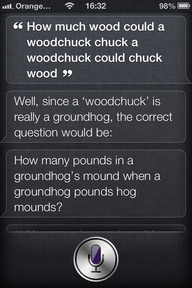 Pounding Groundhog?