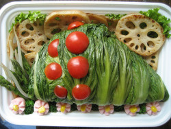 This is one interesting obento!! persephinae:  hashtagasia:  Ohmu bento! by Alteil on Flickr.  oh my gosh.. wow