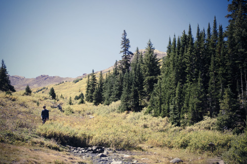 A hike into the wilderness of Aspen, Colorado mid September is the perfect start to fall. The tall Aspens tower over the trail and their changing leaves speckle the mountain side with bright orange and yellow leaves.