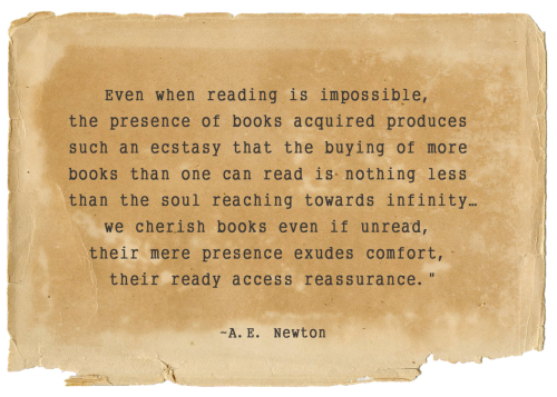 This fantastic quote right here, has explained my obsession with books.  I always knew that someone would understand and that I was never alone in this!