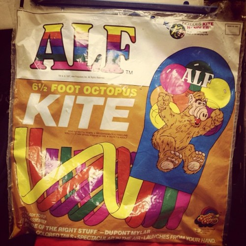 Go fly an ALF kite!  via captainsvintage