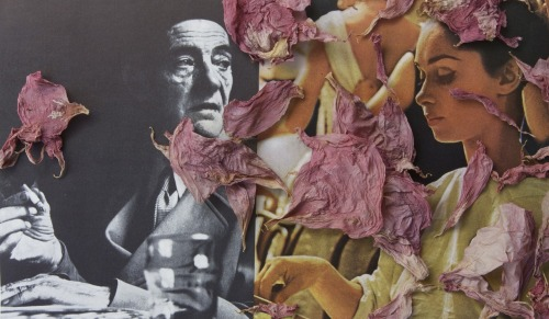 Symbolic Gestures Say More Than Words Ultrachrome print of collage and flower petals