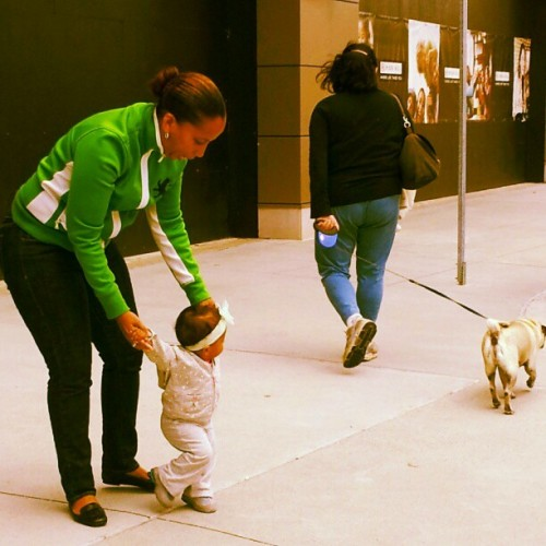 #Sophia is always trying to get somebody's dog lol smh (Taken with Instagram)