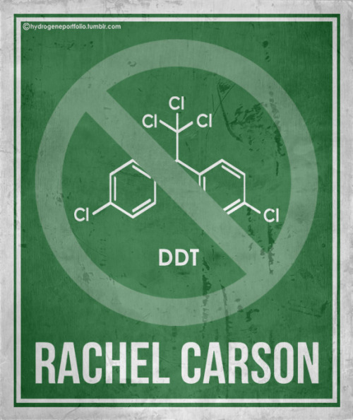 ikenbot:   hydrogeneportfolio:  Minimal Posters - Six Women Who Changed Science. And The Word. Sally Motherfucking Ride, y'all.