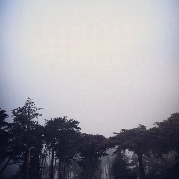 minkmarble:  Why is it always winter at school ? #sanfrancisco #sfsu #fog (Taken with Instagram at Mary Ward DSA)
