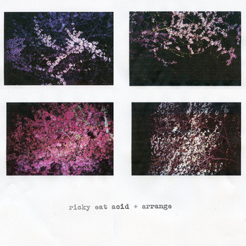 "sketches | Ricky Eat Acid + Arrange <a href=""http://arrange.bandcamp.com/album/sketches"" data-mce-href=""http://arrange.bandcamp.com/album/sketches"">sketches by Ricky Eat Acid + Arrange</a>"