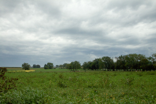Stormy Field, On The Road