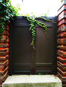 Entrance. #photography #Chicago  Sept 2012, Chicago.