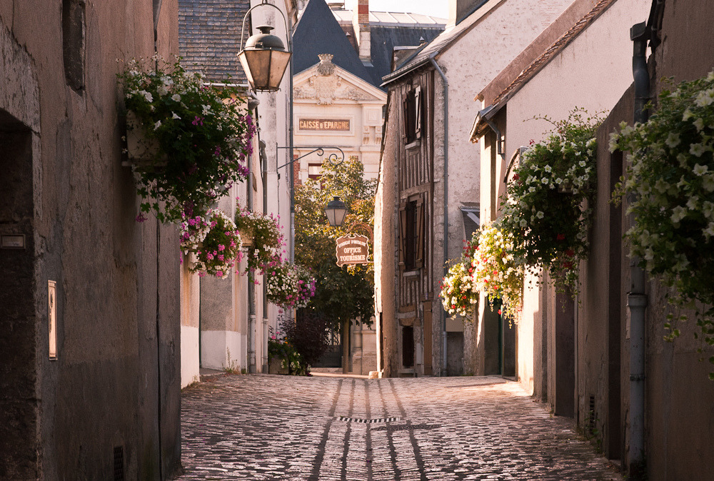 Beaugency, France  | by © penwren | via -cityoflove