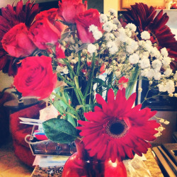 Flowers for my birthday. Ruby daisies are my new favorite flower.