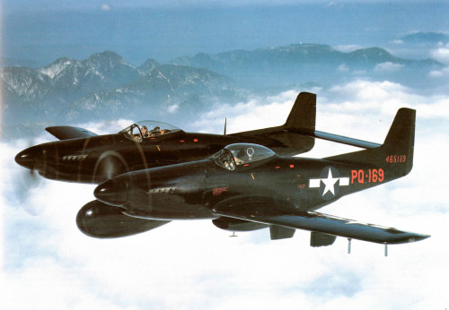 the-whaler:  NORTH AMERICAN F-82 TWIN MUSTANG