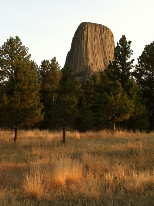 Devils Tower, Wyoming   Natural lighting, no enhancements on this one.