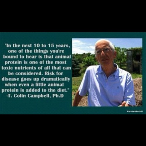 "Watch ""Forks Over Knives""  - trailer here - so worth it!  T. Colin Campbell. Ph.D   - He makes a lot of sense and explains how he changed his views on meat eating as a result of his research. I greatly enjoyed reading about his work in his book ""The China Study"" and I found ""Forks over Knives"" inspirational. My health has changed immeasurably since I radically altered my diet. tiffanygetsfit:  #teamvegan #vegan #veganism (Taken with Instagram)"