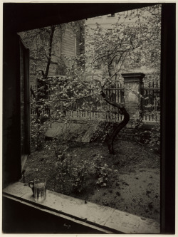 artgalleryofontario:  The Window of My Studio - Spring in My Garden, 1940-1954Josef Sudek Czech, 1896 - 1976Gelatin silver print, 22.9 x 17 cm,Anonymous Gift, 2000Reproduction restricted. AGO/Courtesy of Anna Fàrovà Estate © 2012 Josef Sudek: The Legacy of a Deeper Vision runs October 3, 2012, to April 7, 2013, at the AGO.
