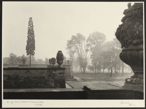 Gardens of Troia Castle, 1953Josef Sudek Czech, 1896 - 1976Gelatin silver print, 29.2 x 39.6 cm,Anonymous Gift, 2000Reproduction restricted. AGO/Courtesy of Anna Fàrovà Estate © 2012 Josef Sudek: The Legacy of a Deeper Vision runs October 3, 2012, to April 7, 2013, at the AGO.