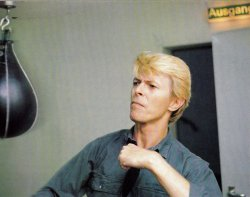ziggyp0p:  Don't mess with Bowie.
