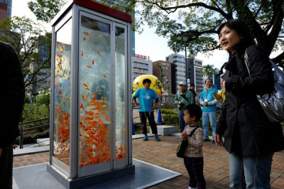 Turning Photo Booths into Aquariums From Atlantic Cities:  These days telephone booths are pretty much obsolete. Instead of letting them slowly decay on the city sidewalks, an artist collaborative called Kingyobu in Osaka is converting them into giant goldfish aquariums. The shimmery orange fish is somewhat of a good luck charm in Japan, so visitors crowd around the awesome tanks and get their luck and happiness fill.