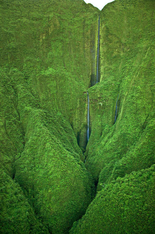 inoperant:  Maui Waterfalls - Honokohau Falls (by IronRodArt - Royce Bair (NightScapes on Thursdays))