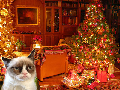 9 Things Unimpressed Cat Is Deeply Unimpressed With: Christmas Morning – The Frisky