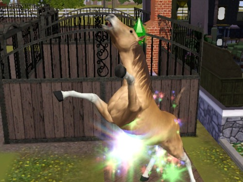 simsgonewrong:  …Just.. what.