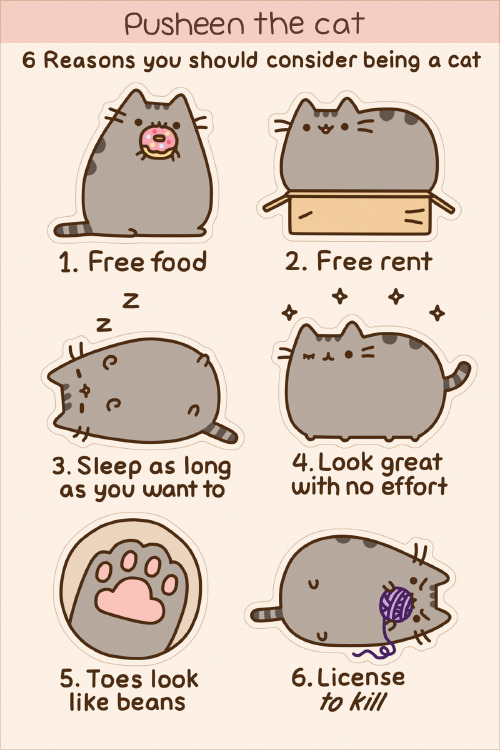 pusheen:  This Pusheen sticker sheet (6 stickers) is now available at Hey Chickadee!