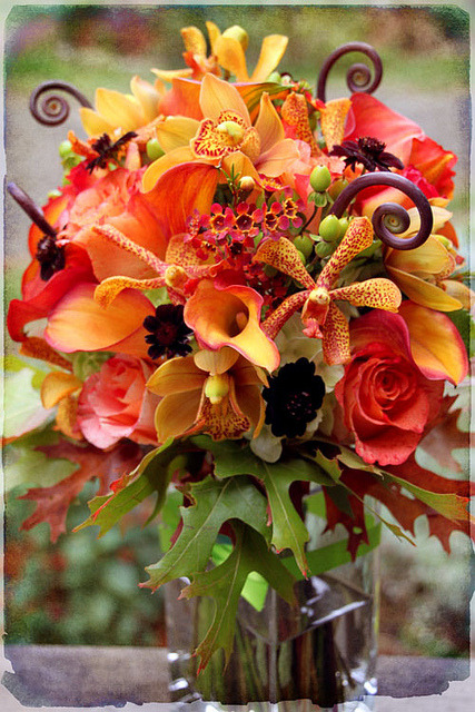 quebuenoesvivir:  A Fall Bouquet by Gilding Lilies on Flickr.