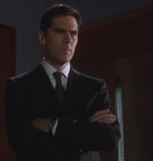 When Aaron Hotchner crosses his arms, I uncross my legs.  IJS.