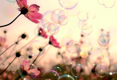 Good morning with bubbles and flowers