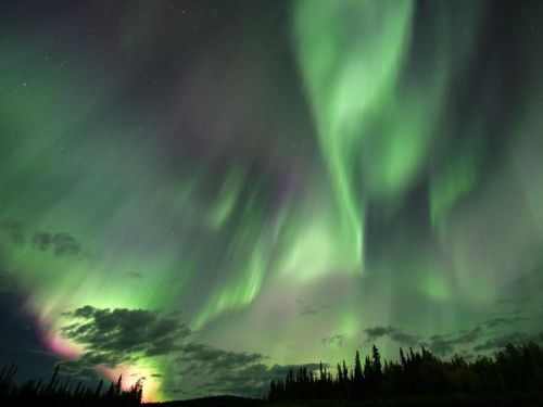 aurora borealis, canada.                                photo by robert postma
