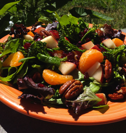 (Click here for recipe Fresh Fall Salad)