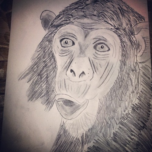 Chimpanzee 🐒🐵🙉 #artpage  (Taken with Instagram)