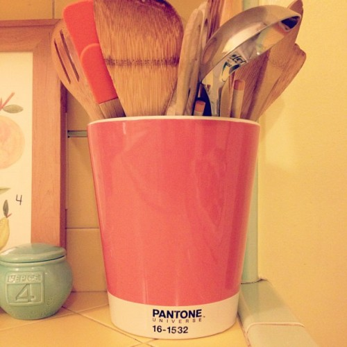 New planters finally arrived! I'm growing cooking utensils. (Taken with Instagram)
